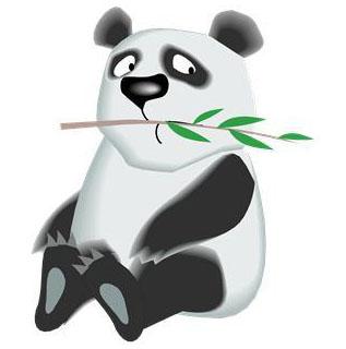panda chewing bamboo