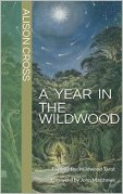 A Year in the Wildwood: Explore the Wildwood Tarot