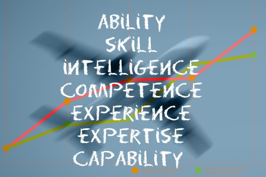success, ability, skill, intelligence, competence, experience, expertise, capability