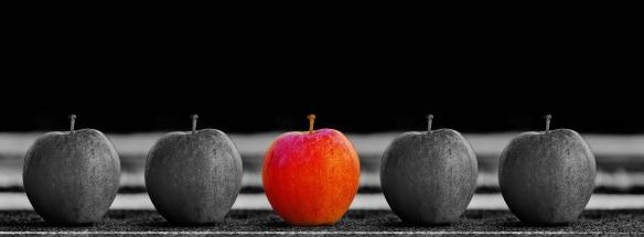 diversity, apples