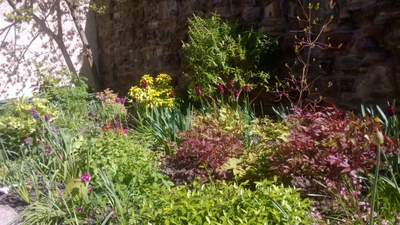 City of Edinburgh Methodist Church Garden