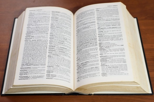 dictionary words